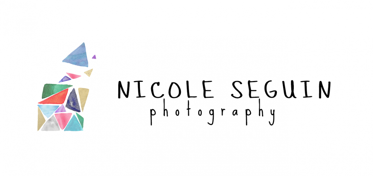 Fun lifestyle family photographer Nicole Seguin Photography serving San Francisco and the Bay Area